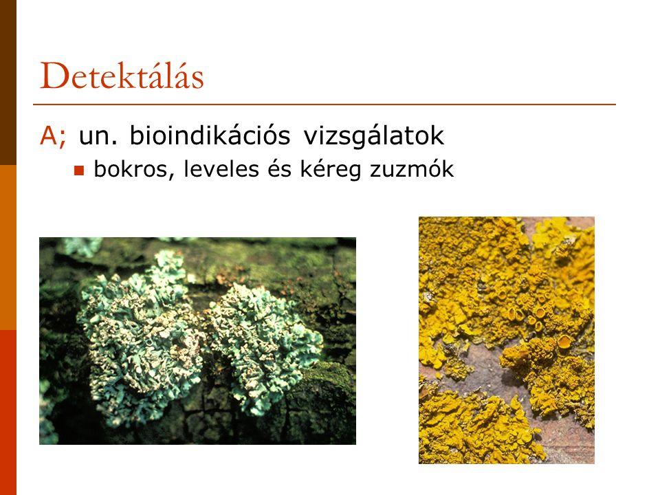 Detektálás A; un. bioindikációs vizsgálatok bokros, leveles és kéreg zuzmók