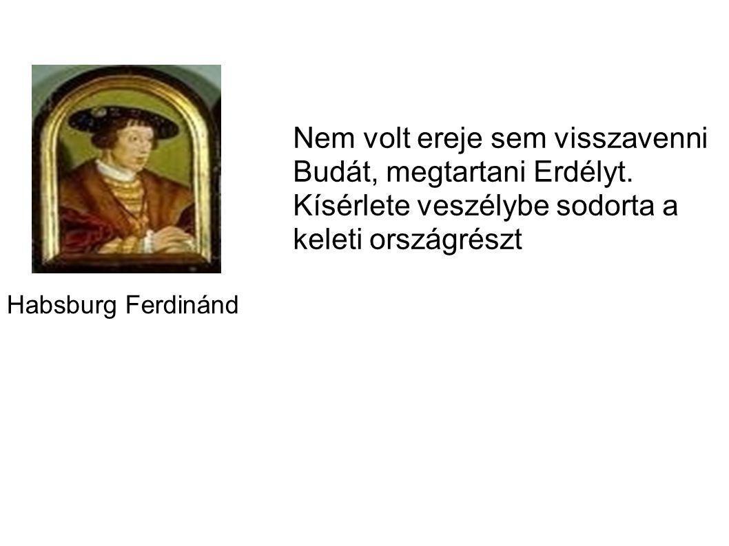 Habsburg Ferdinánd Nem volt ereje sem visszavenni Budát, megtartani Erdélyt. Kísérlete veszélybe sodorta a keleti országrészt