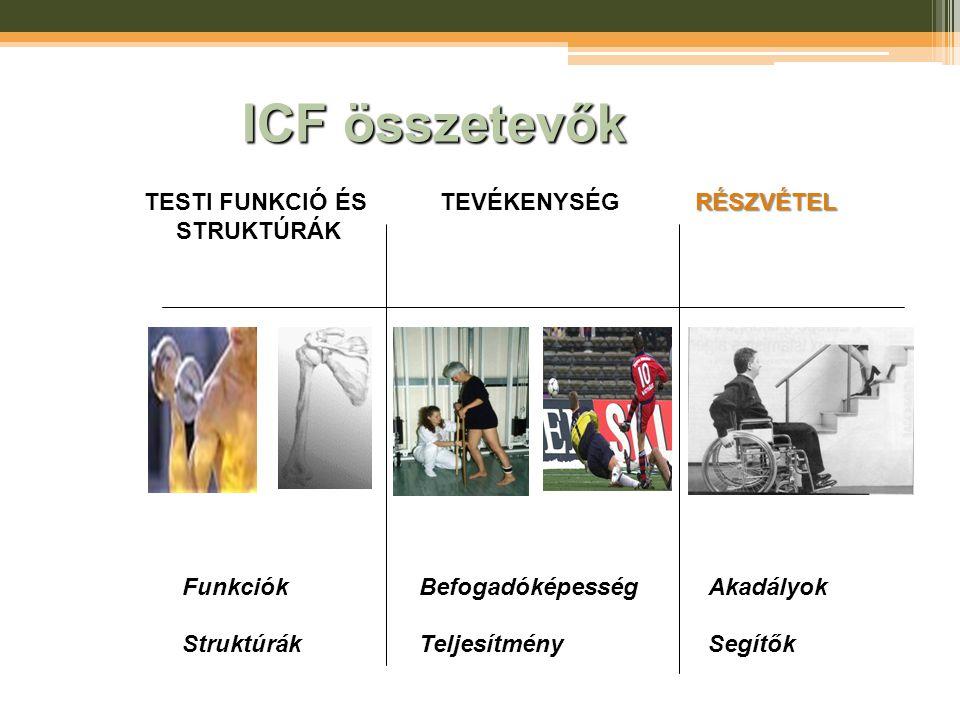 ICF összetevők TESTI FUNKCIÓ ÉS STRUKTÚRÁKTEVÉKENYSÉGRÉSZVÉTEL AkadályokSegítők Funkciók Struktúrák BefogadóképességTeljesítmény
