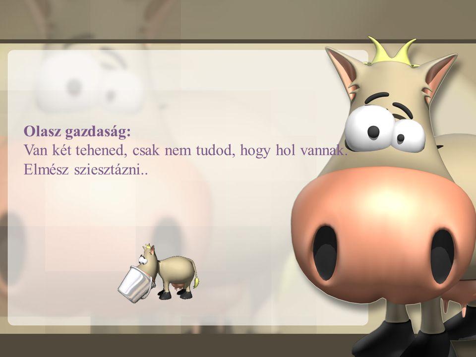 Svájci gazdaság: Van 5000 tehened, de egyik sem a tied. Másokkal fizettetsz a megőrzésükért.