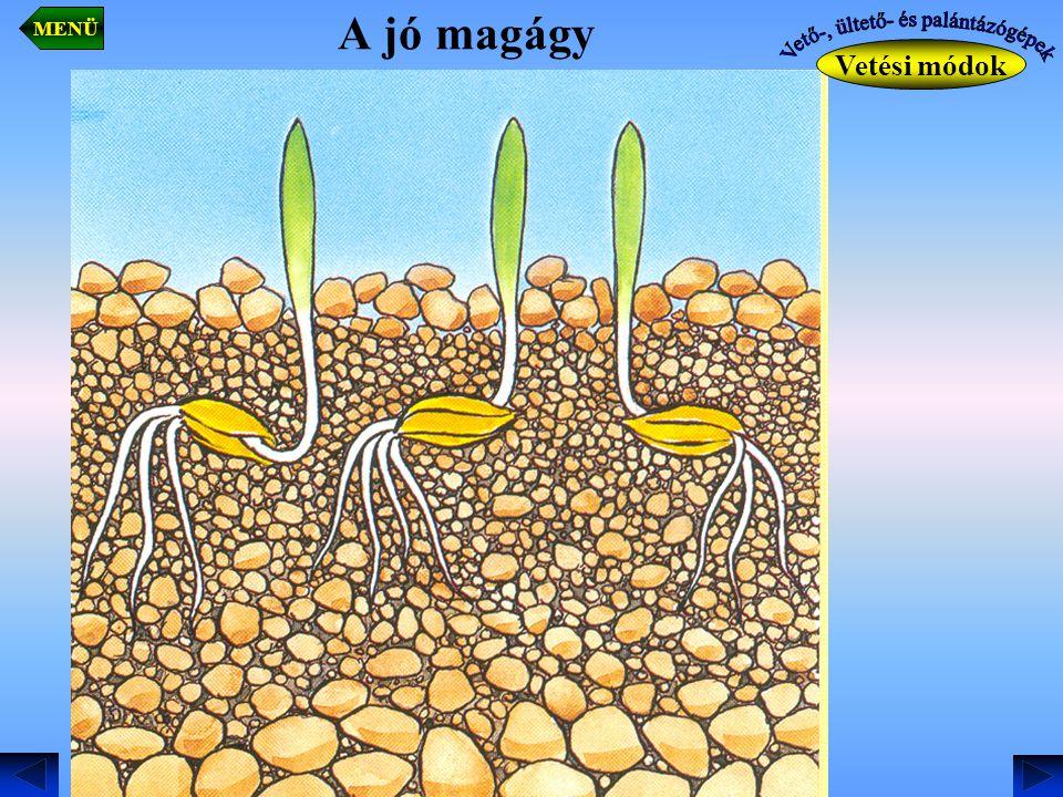- Központi adagolású vetőszerkezet: egy magtartály, – egy vetőszerkezet több csoroszlyát lát el.