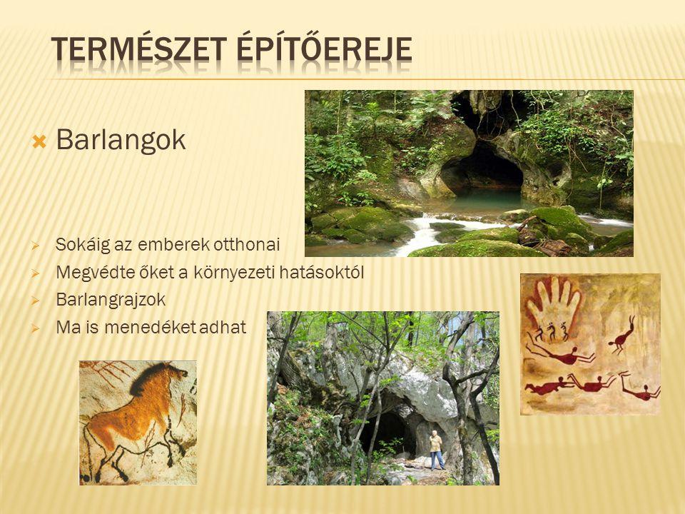  Először a természet adta anyagokat használták:  Sár  Kő  Nád  Állati bőrök Kunyhók, házak