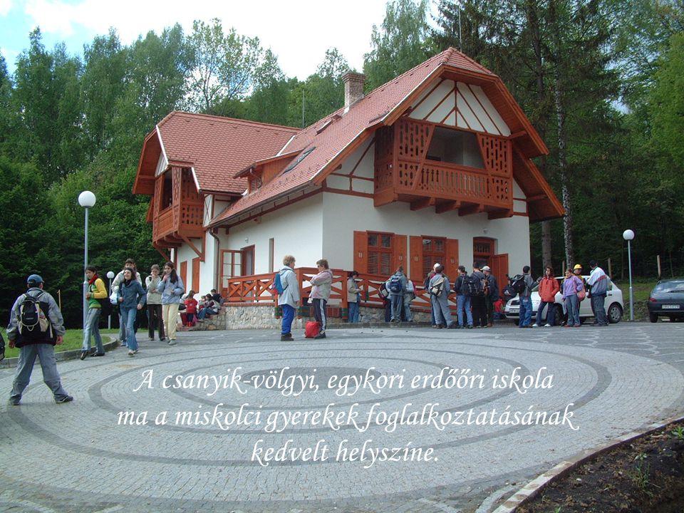A csanyik-völgyi, egykori erdőőri iskola ma a miskolci gyerekek foglalkoztatásának kedvelt helyszíne.