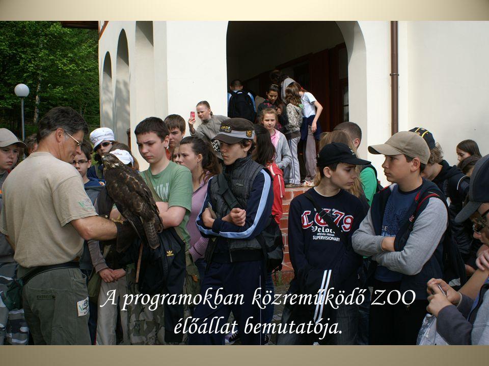 A programokban közreműködő ZOO élőállat bemutatója.