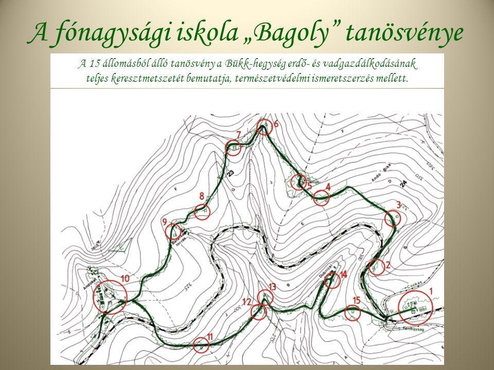 """A fónagysági iskola """"Bagoly tanösvénye A 15 állomásból álló tanösvény a Bükk-hegység erdő- és vadgazdálkodásának teljes keresztmetszetét bemutatja, természetvédelmi ismeretszerzés mellett."""