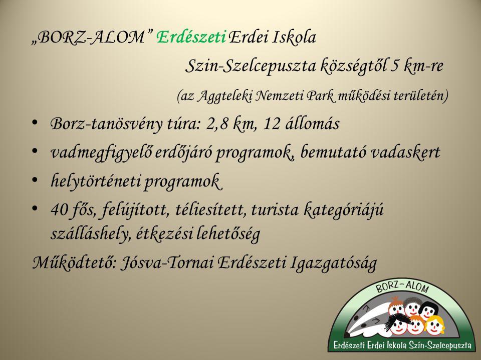 """""""BORZ-ALOM Erdészeti Erdei Iskola Szin-Szelcepuszta községtől 5 km-re (az Aggteleki Nemzeti Park működési területén) Borz-tanösvény túra: 2,8 km, 12 állomás vadmegfigyelő erdőjáró programok, bemutató vadaskert helytörténeti programok 40 fős, felújított, téliesített, turista kategóriájú szálláshely, étkezési lehetőség Működtető: Jósva-Tornai Erdészeti Igazgatóság"""