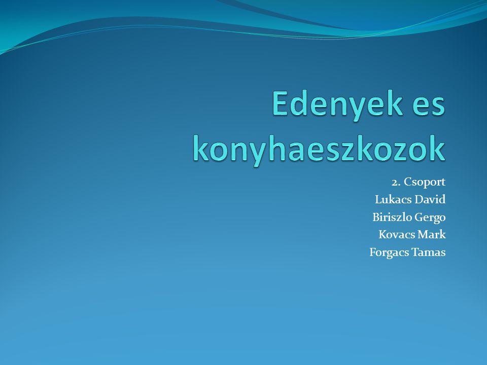 2. Csoport Lukacs David Biriszlo Gergo Kovacs Mark Forgacs Tamas