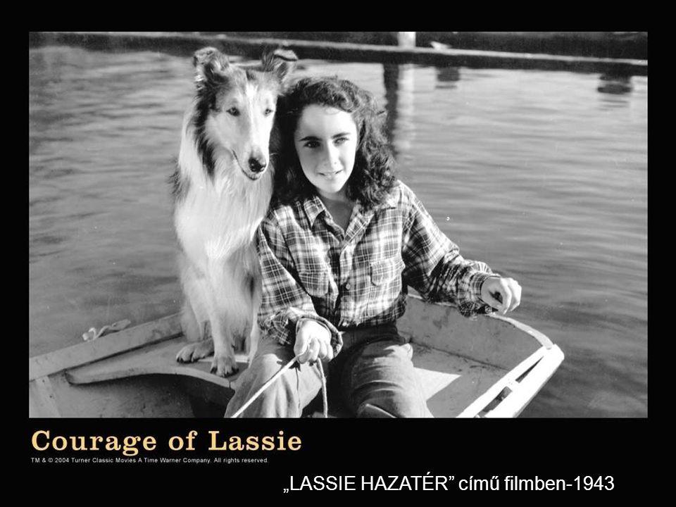 """""""LASSIE HAZATÉR című filmben-1943"""