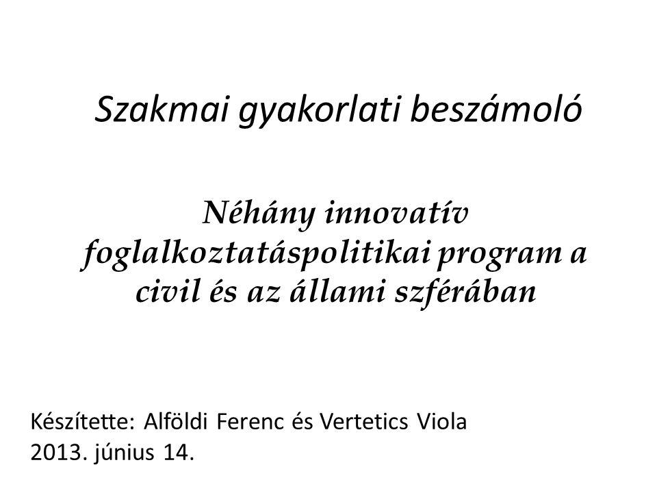 Szakmai gyakorlati beszámoló Néhány innovatív foglalkoztatáspolitikai program a civil és az állami szférában Készítette: Alföldi Ferenc és Vertetics Viola 2013.