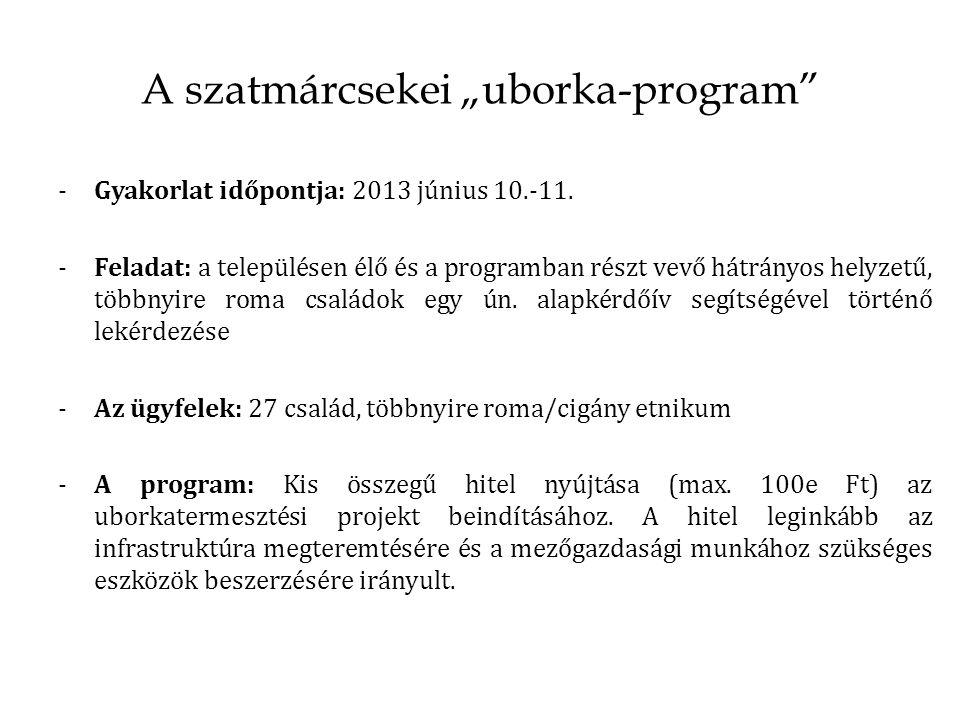 """A szatmárcsekei """"uborka-program -Gyakorlat időpontja: 2013 június 10.-11."""