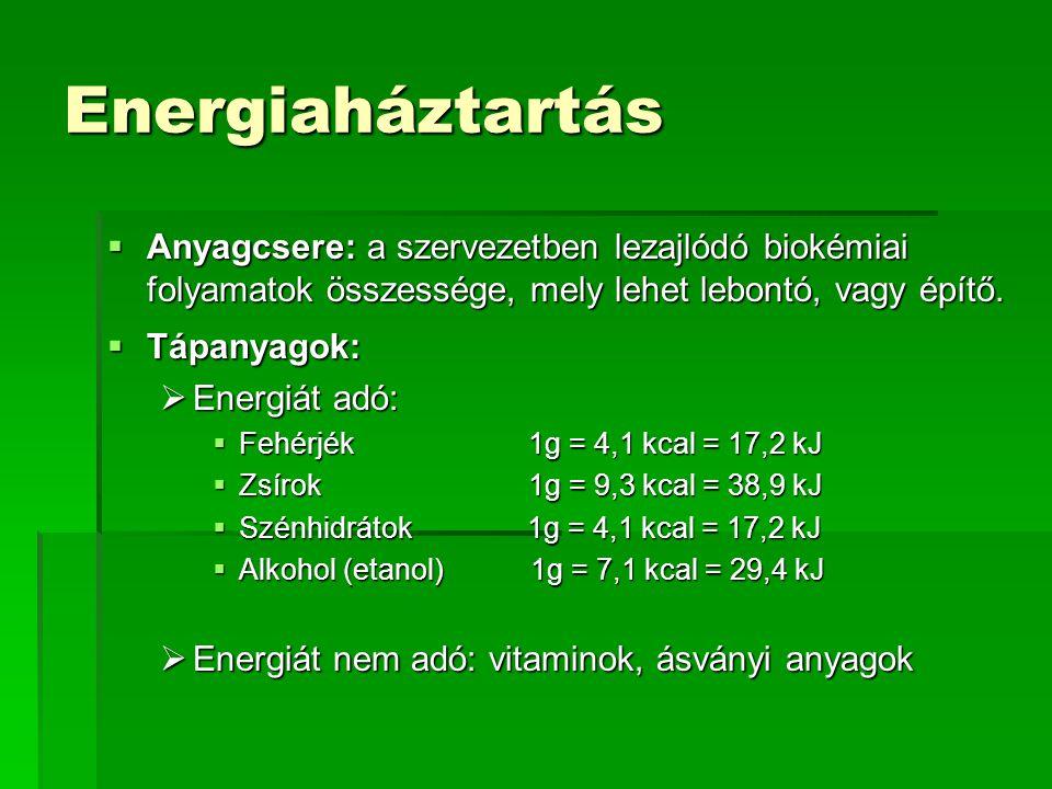 Energiaháztartás  Anyagcsere: a szervezetben lezajlódó biokémiai folyamatok összessége, mely lehet lebontó, vagy építő.  Tápanyagok:  Energiát adó: