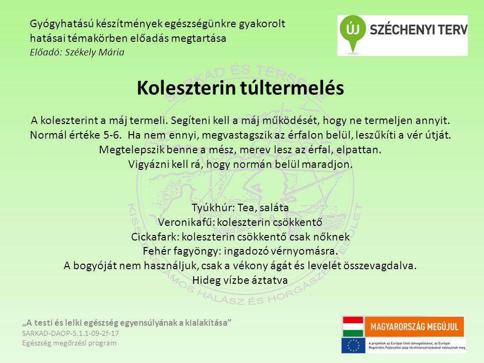 Koleszterin túltermelés A koleszterint a máj termeli. Segíteni kell a máj működését, hogy ne termeljen annyit. Normál értéke 5-6. Ha nem ennyi, megvas