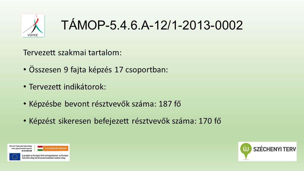 TÁMOP-5.4.6.A-12/1-2013-0002 Tervezett szakmai tartalom: Összesen 9 fajta képzés 17 csoportban: Tervezett indikátorok: Képzésbe bevont résztvevők száma: 187 fő Képzést sikeresen befejezett résztvevők száma: 170 fő