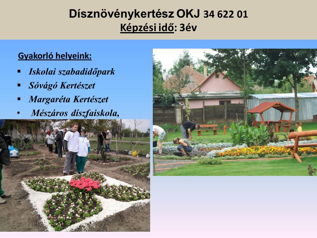 Mezőgazdasági gépész OKJ 34 521 08 Képzési idő: 3 év Gyakorlóhelyek: -Iskolai tanműhelyek - Hajdúdorogi Bocskai Növterm. Kft - BÉKE Agrárszövetkezet -