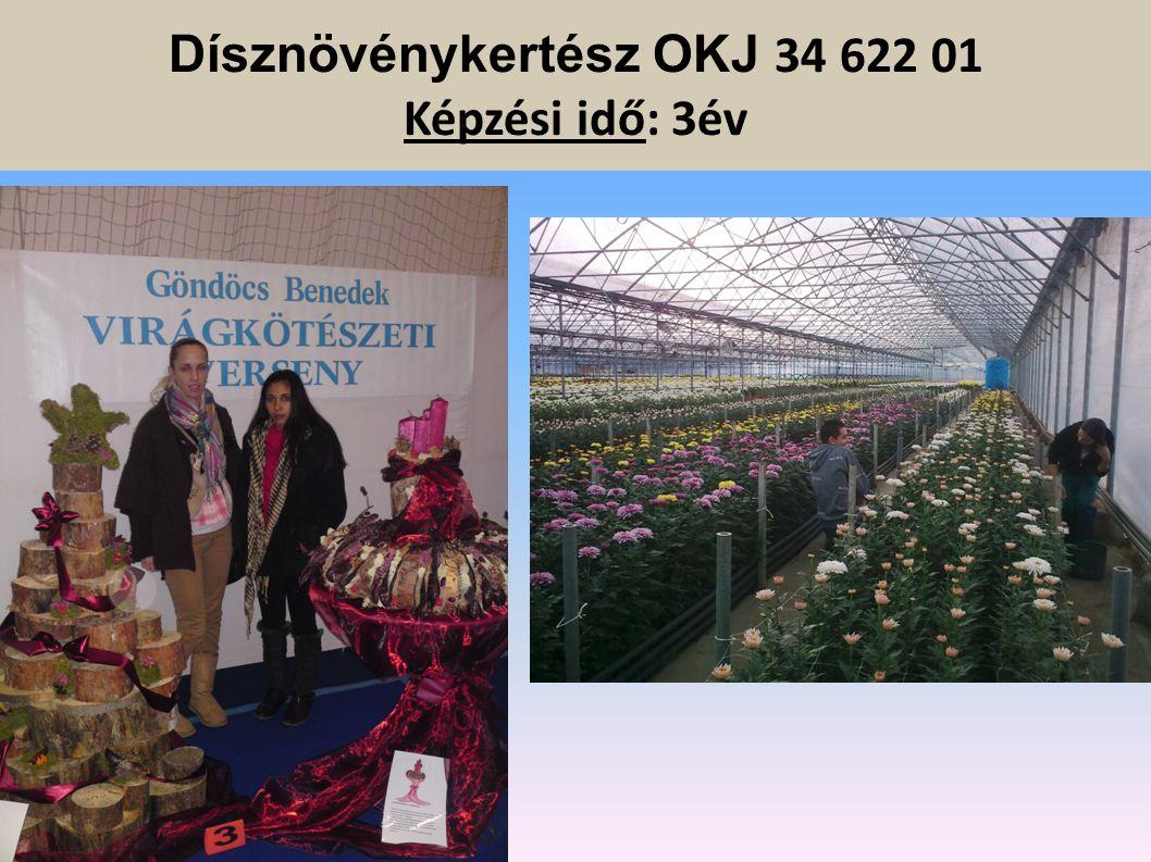 Dísznövénykertész OKJ 34 622 01 Képzési idő: 3év Gyakorló helyeink:  Iskolai szabadidőpark  Sóvágó Kertészet  Margaréta Kertészet Mészáros díszfais