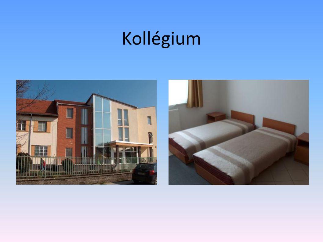 Kollégium Az iskolához tartozik egy 250 férőhelyes és egy 50 férőhelyes modern kollégium, mely négyágyas világos, tágas szobákkal és szabadidő hasznos