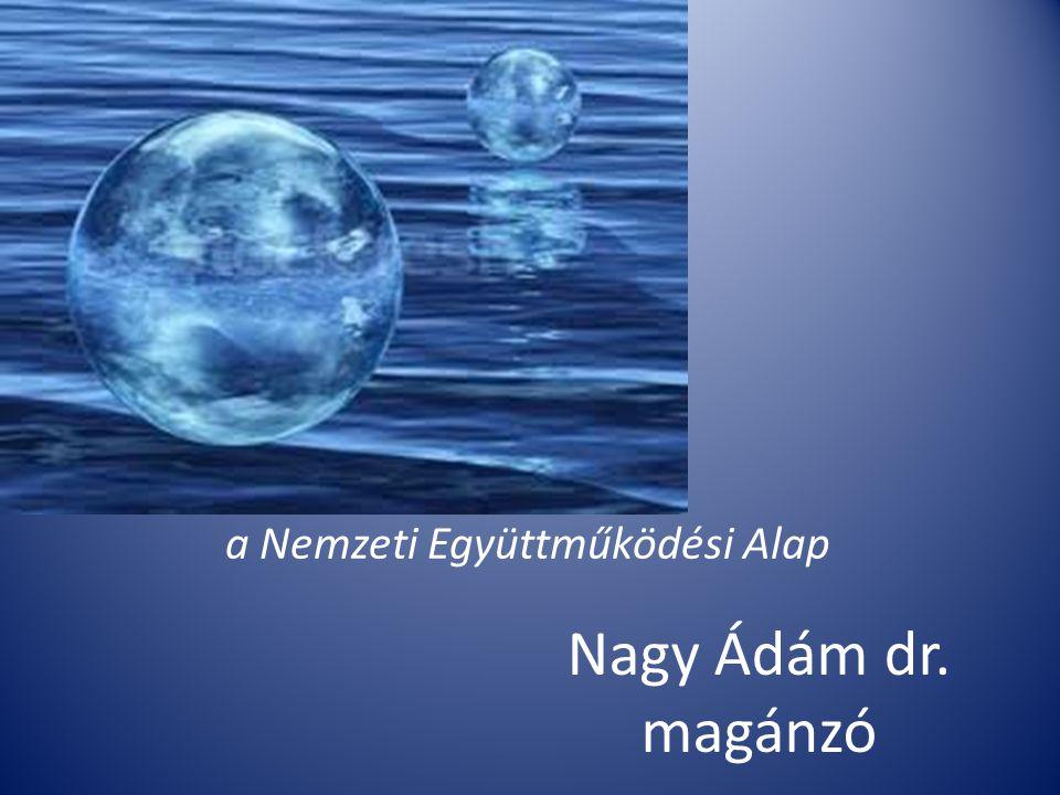 Nagy Ádám dr. magánzó a Nemzeti Együttműködési Alap