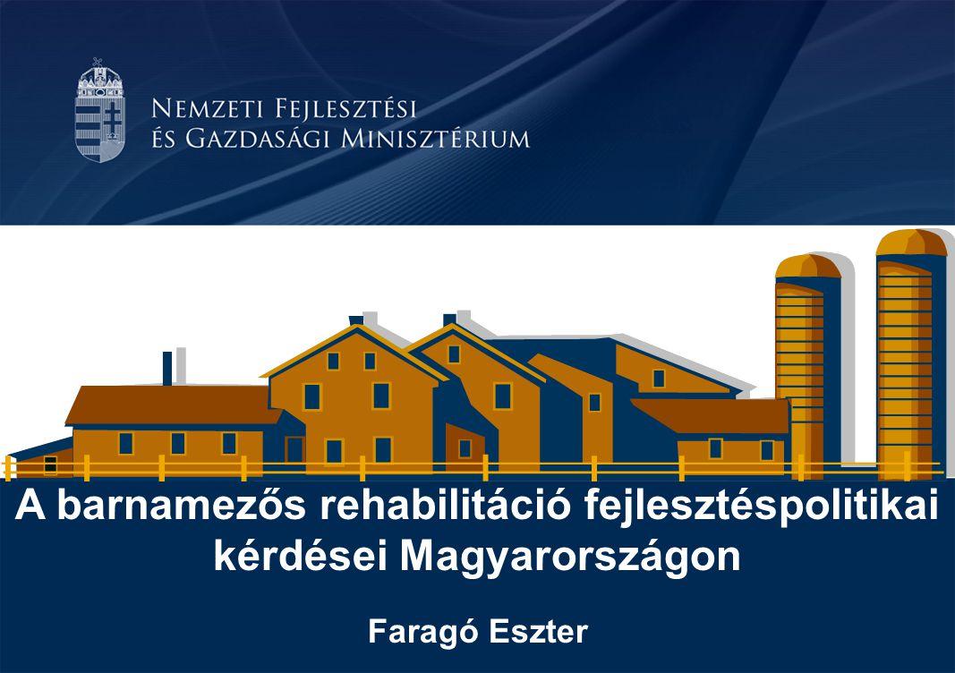 A barnamezős rehabilitáció fejlesztéspolitikai kérdései Magyarországon Barnamező megjelenési formái Magyarországon Volt ipari terület Bányászati (külszíni, mélyművelési) Katonai területek Vasútvonal Egyéb, korábban gazdaságilag fejlett terület