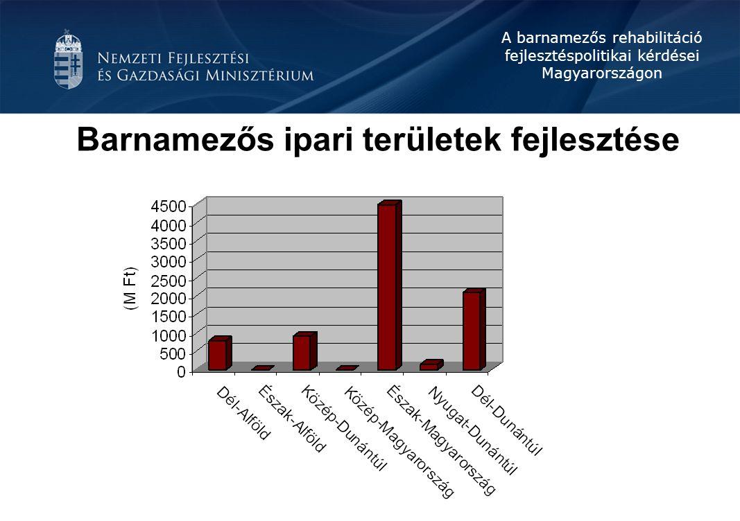 A barnamezős rehabilitáció fejlesztéspolitikai kérdései Magyarországon Barnamezős ipari területek fejlesztése