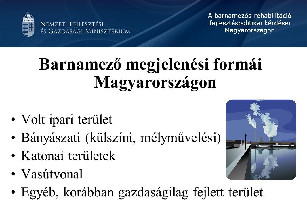A barnamezős rehabilitáció fejlesztéspolitikai kérdései Magyarországon Problémák gazdasági oldalról Jóval magasabb költség Beruházás rendkívül magas kockázata Magasabb adminisztrációs teher (több engedély) Komplex fejlesztési igény Jelenlegi támogatási rendszer nem integrált módon közelíti meg