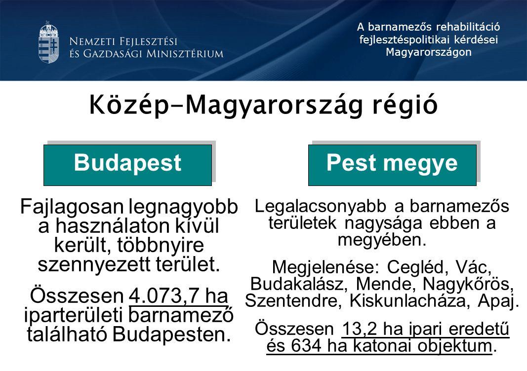 A barnamezős rehabilitáció fejlesztéspolitikai kérdései Magyarországon Barnamező fejlesztési pályázat Gazdasági terület: legalább 10 éve gazdasági terület, és ipari tevékenység folyt vagy folyik rajta, illetve mezőgazdasági üzemi területként funkcionált Különleges terület, ezen belül oktatási központok; egészségügyi területek; nyersanyag kitermelés (bányászat), vagy előfeldolgozás céljára szolgáló terület; honvédelmi és katonai, valamint nemzetbiztonsági építmények területei; hulladékkezelők, -lerakók területei; mezőgazdasági üzemi terület Közlekedési és közműterület, ezen belül közlekedési építmények; igazgatási építmény