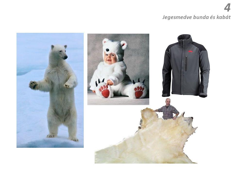 Jegesmedve bunda és kabát 4
