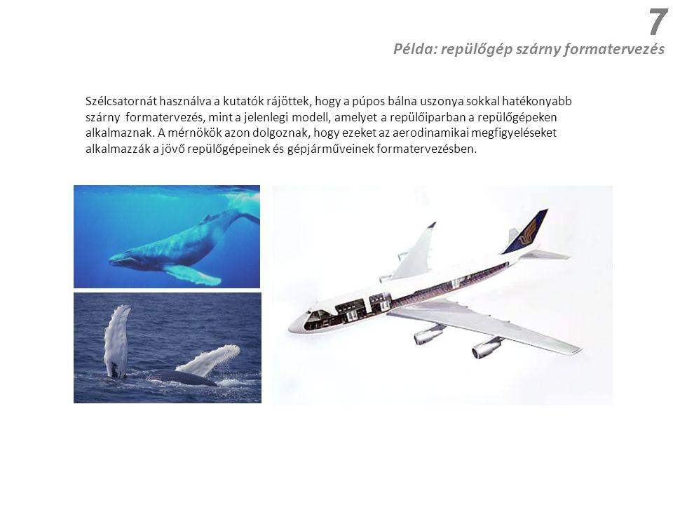 Példa: repülőgép szárny formatervezés Szélcsatornát használva a kutatók rájöttek, hogy a púpos bálna uszonya sokkal hatékonyabb szárny formatervezés, mint a jelenlegi modell, amelyet a repülőiparban a repülőgépeken alkalmaznak.