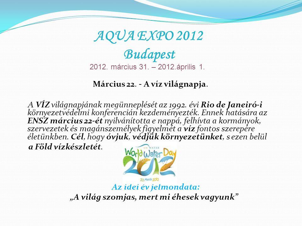 Március 22. - A víz világnapja. A VÍZ világnapjának megünneplését az 1992.