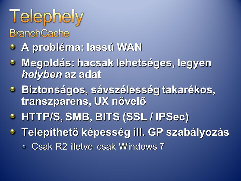 A probléma: lassú WAN Megoldás: hacsak lehetséges, legyen helyben az adat Biztonságos, sávszélesség takarékos, transzparens, UX növelő HTTP/S, SMB, BI