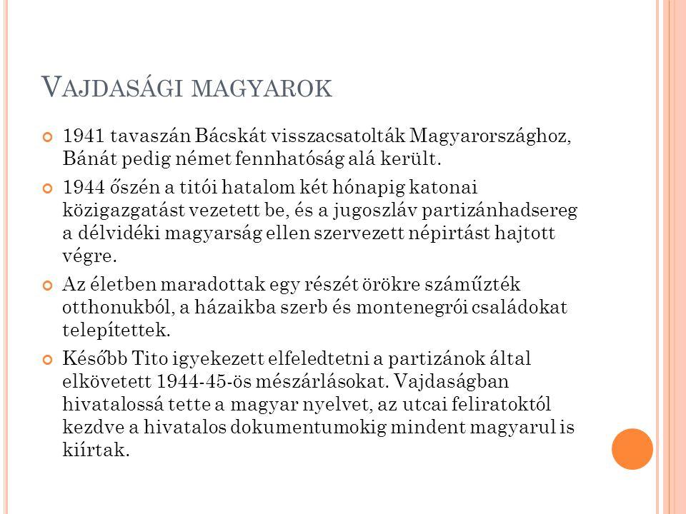 1990-ben, a milosevicsi soviniszta rendszer hatalomra jutásával megkezdődött a délvidéki magyarság újabb tragikus kálváriája.