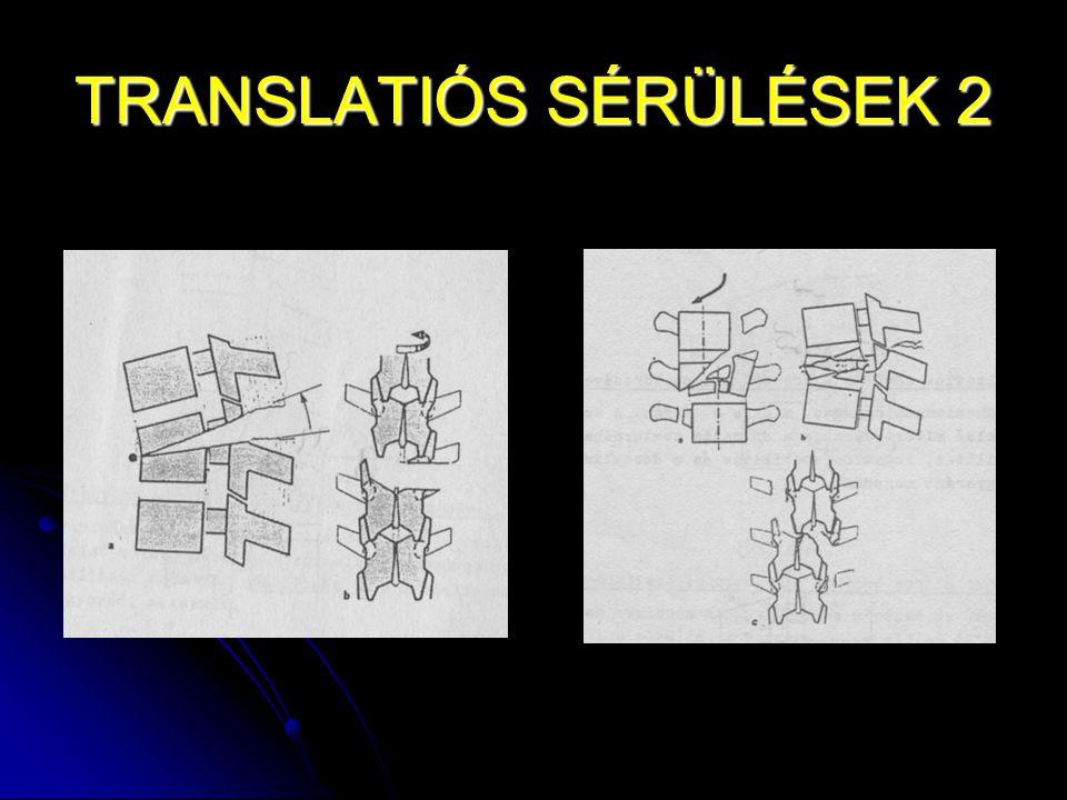 TRANSLATIÓS SÉRÜLÉSEK 2