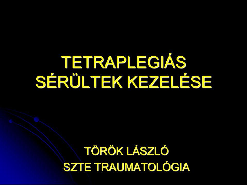 TETRAPLEGIÁS SÉRÜLTEK KEZELÉSE TÖRÖK LÁSZLÓ SZTE TRAUMATOLÓGIA