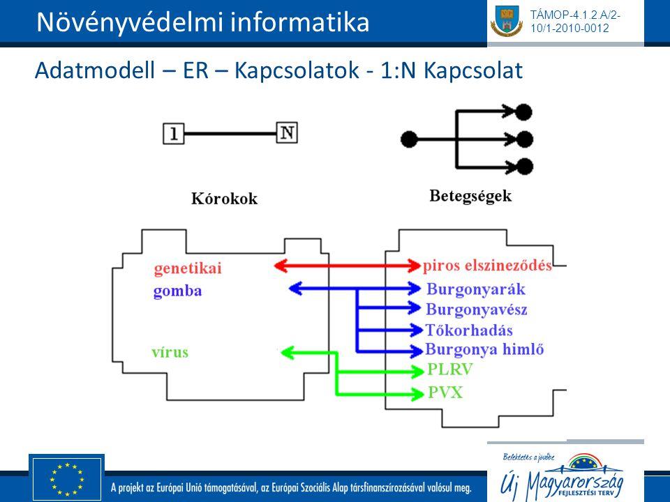 TÁMOP-4.1.2.A/2- 10/1-2010-0012 Adatmodell – ER – Kapcsolatok - 1:N Kapcsolat Növényvédelmi informatika