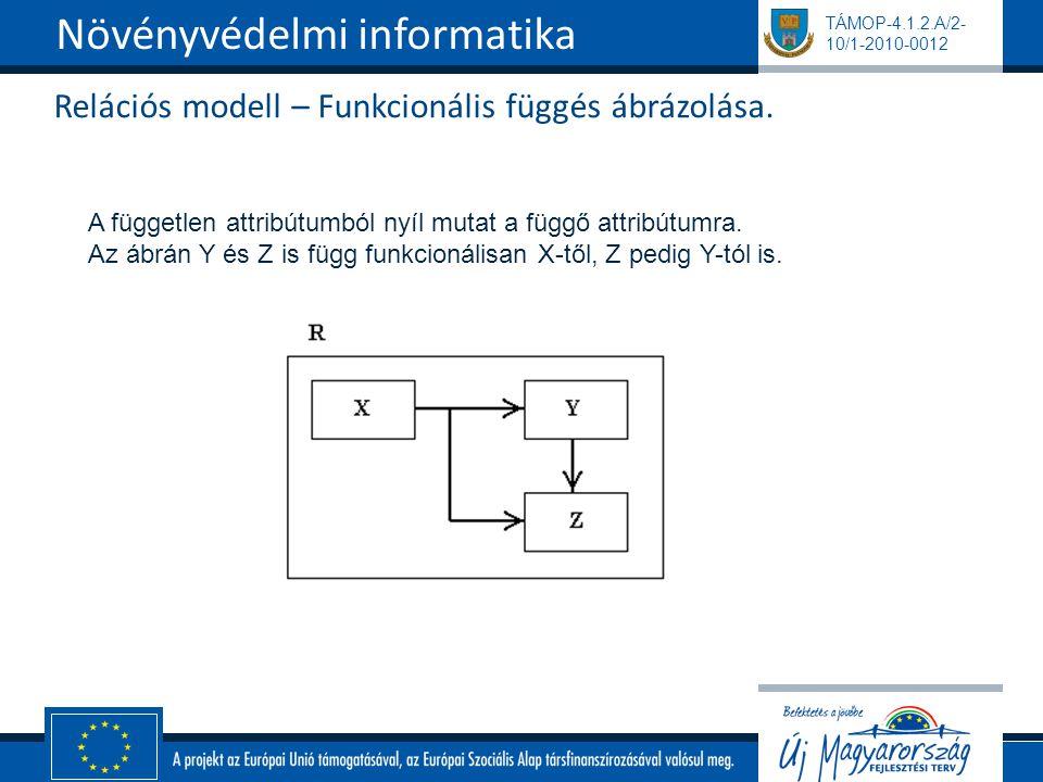 TÁMOP-4.1.2.A/2- 10/1-2010-0012 Relációs modell – Funkcionális függés ábrázolása. Növényvédelmi informatika A független attribútumból nyíl mutat a füg