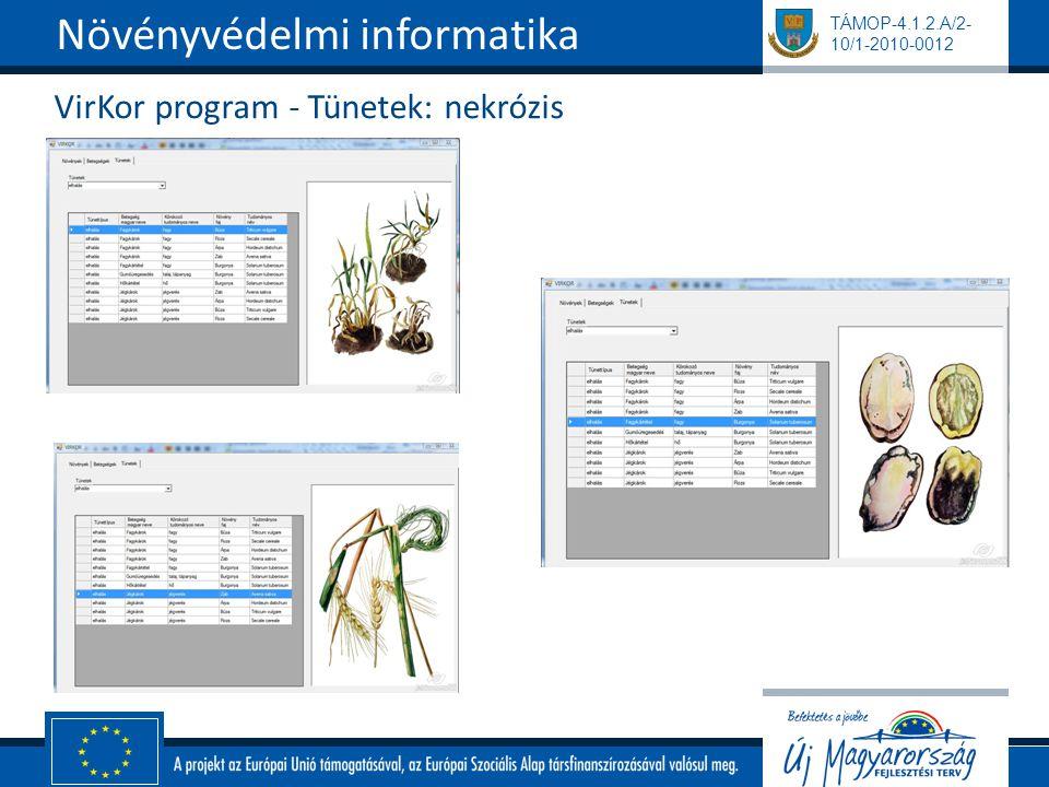TÁMOP-4.1.2.A/2- 10/1-2010-0012 VirKor program - Tünetek: nekrózis Növényvédelmi informatika