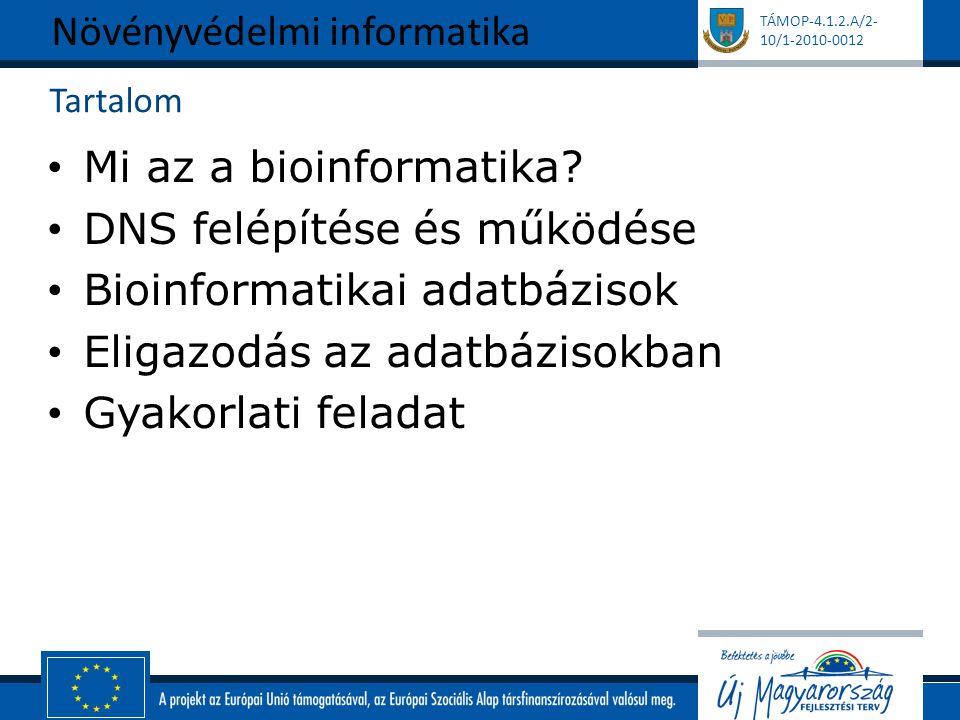 TÁMOP-4.1.2.A/2- 10/1-2010-0012 Tartalom Mi az a bioinformatika? DNS felépítése és működése Bioinformatikai adatbázisok Eligazodás az adatbázisokban G