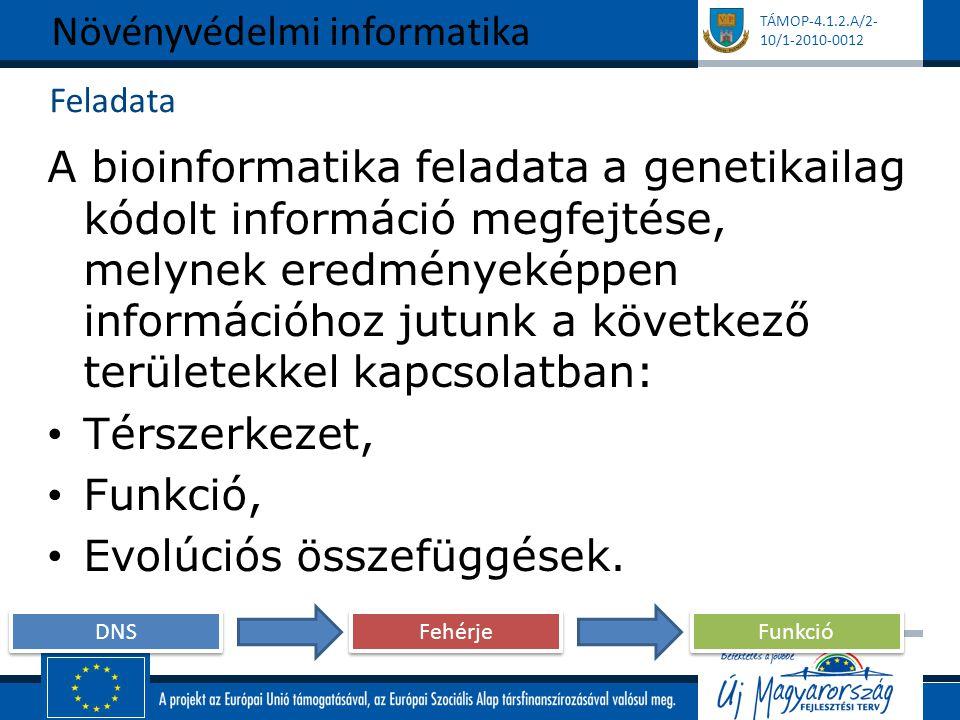 TÁMOP-4.1.2.A/2- 10/1-2010-0012 Feladata A bioinformatika feladata a genetikailag kódolt információ megfejtése, melynek eredményeképpen információhoz