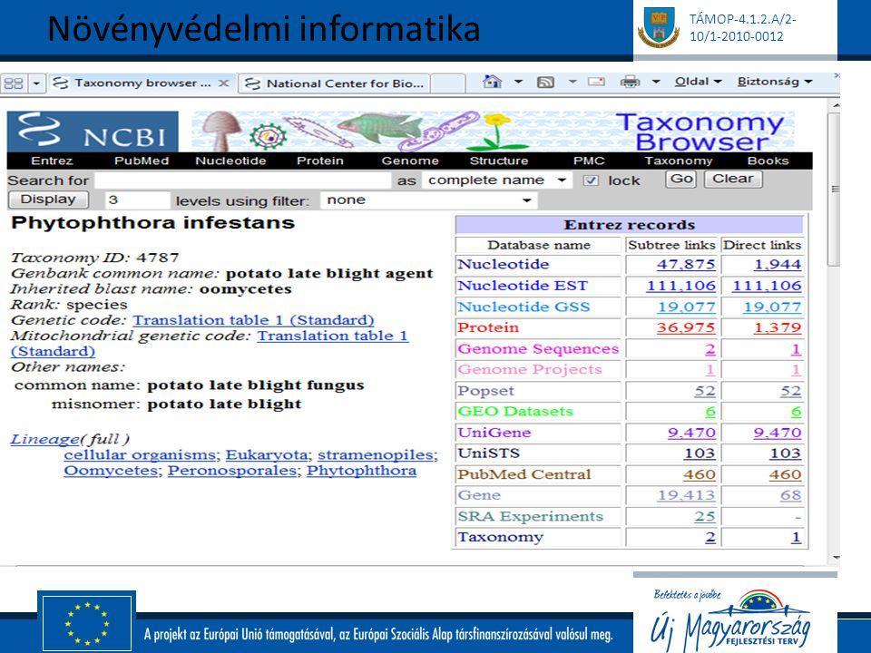 TÁMOP-4.1.2.A/2- 10/1-2010-0012 Eligazodás az adatbázisban - Gene Bank Eredmény tábla: Növényvédelmi informatika