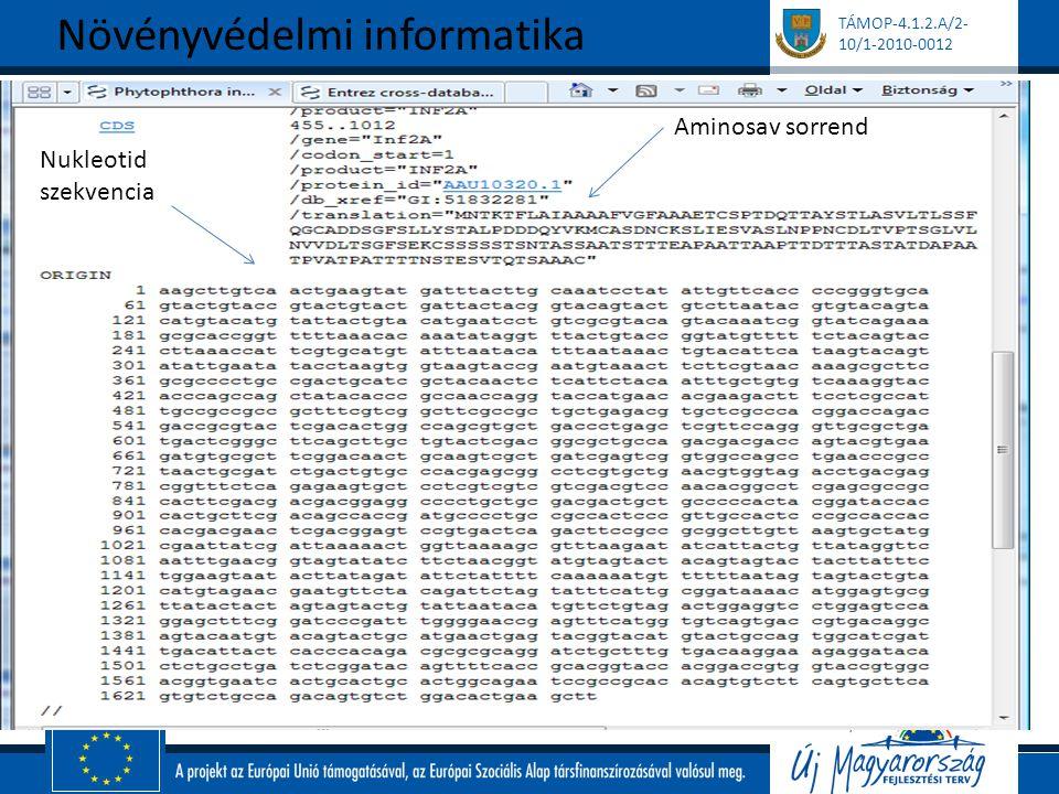 TÁMOP-4.1.2.A/2- 10/1-2010-0012 Növényvédelmi informatika Aminosav sorrend Nukleotid szekvencia
