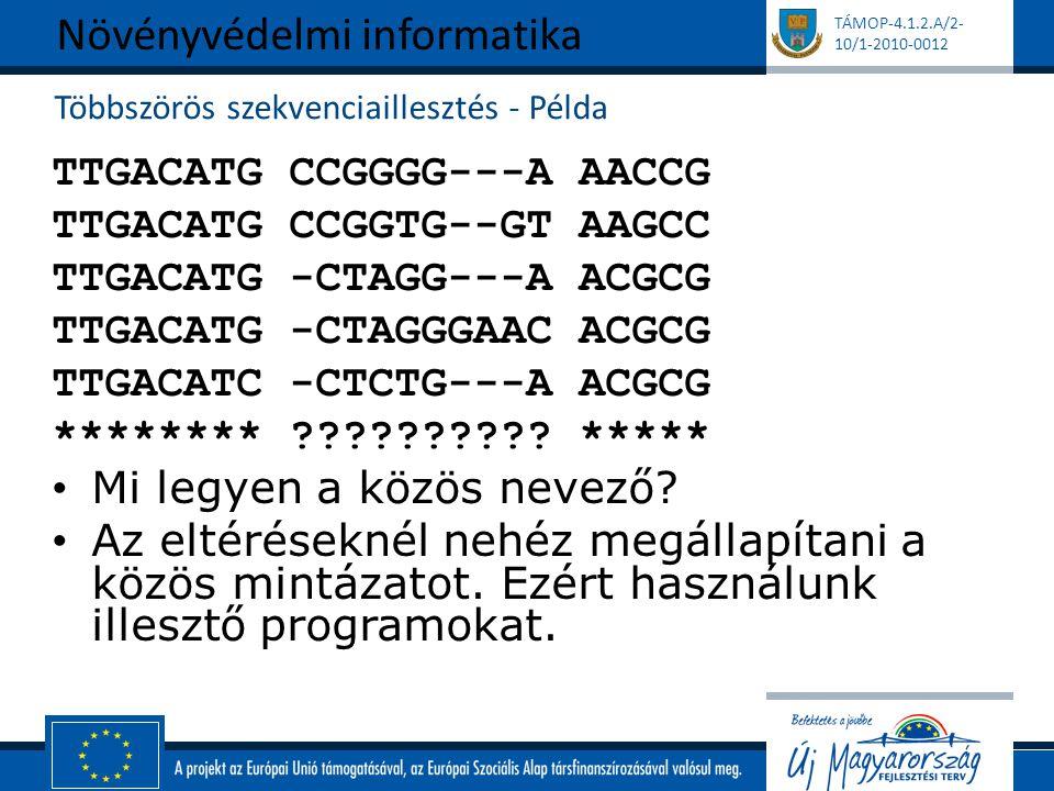 TÁMOP-4.1.2.A/2- 10/1-2010-0012 Többszörös szekvenciaillesztés - Példa TTGACATG CCGGGG---A AACCG TTGACATG CCGGTG--GT AAGCC TTGACATG -CTAGG---A ACGCG TTGACATG -CTAGGGAAC ACGCG TTGACATC -CTCTG---A ACGCG ******** ?????????.