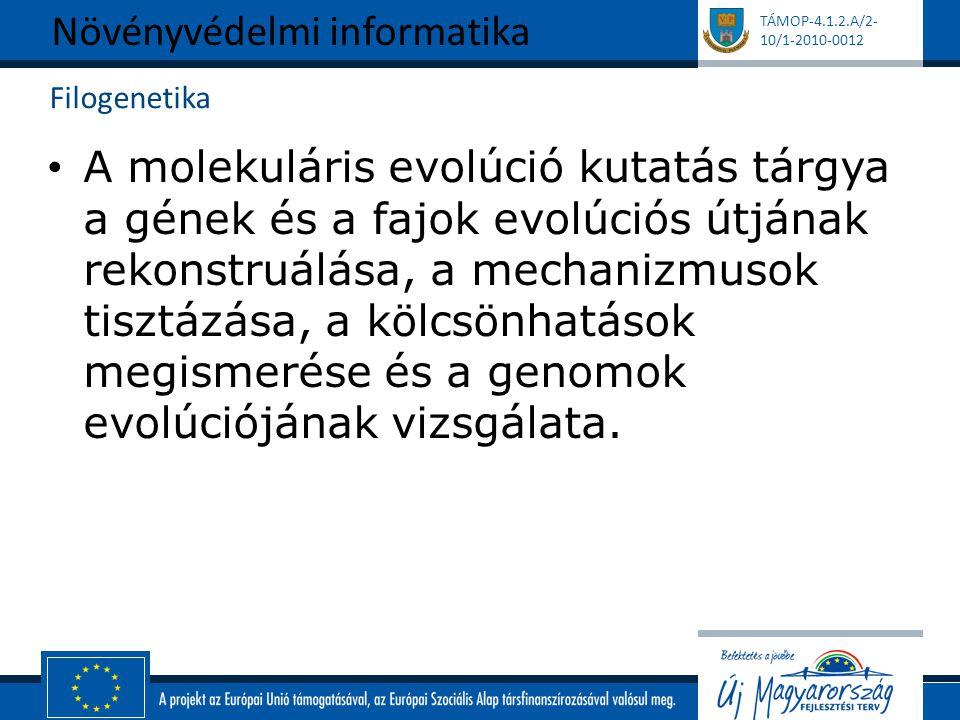 TÁMOP-4.1.2.A/2- 10/1-2010-0012 Filogenetika A molekuláris evolúció kutatás tárgya a gének és a fajok evolúciós útjának rekonstruálása, a mechanizmuso