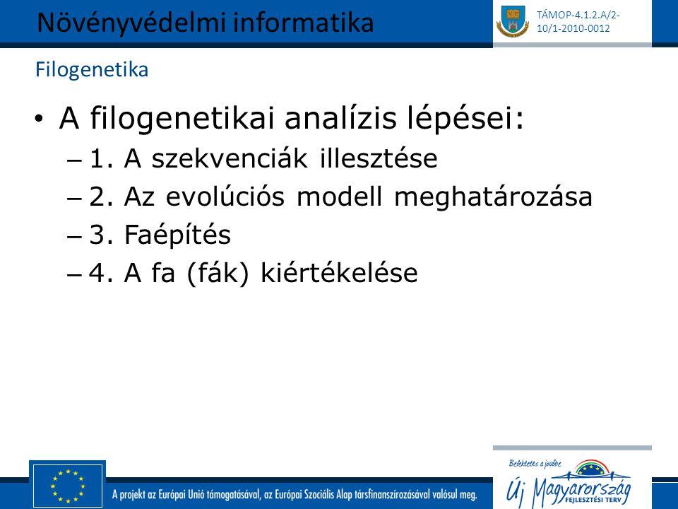 TÁMOP-4.1.2.A/2- 10/1-2010-0012 Filogenetika A filogenetikai analízis lépései: – 1.