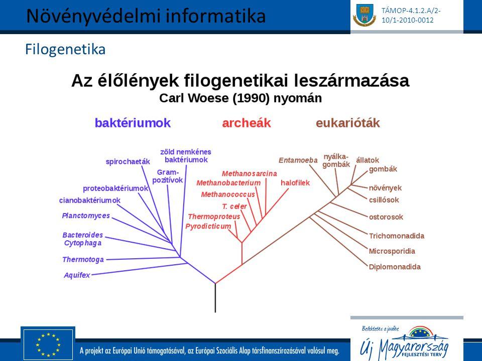 TÁMOP-4.1.2.A/2- 10/1-2010-0012 Filogenetika Növényvédelmi informatika