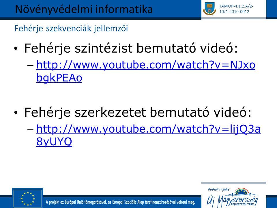 TÁMOP-4.1.2.A/2- 10/1-2010-0012 Fehérje szekvenciák jellemzői Fehérje szintézist bemutató videó: – http://www.youtube.com/watch?v=NJxo bgkPEAo http://