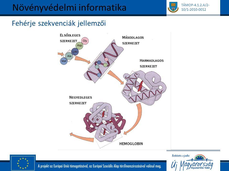 TÁMOP-4.1.2.A/2- 10/1-2010-0012 Fehérje szekvenciák jellemzői Növényvédelmi informatika