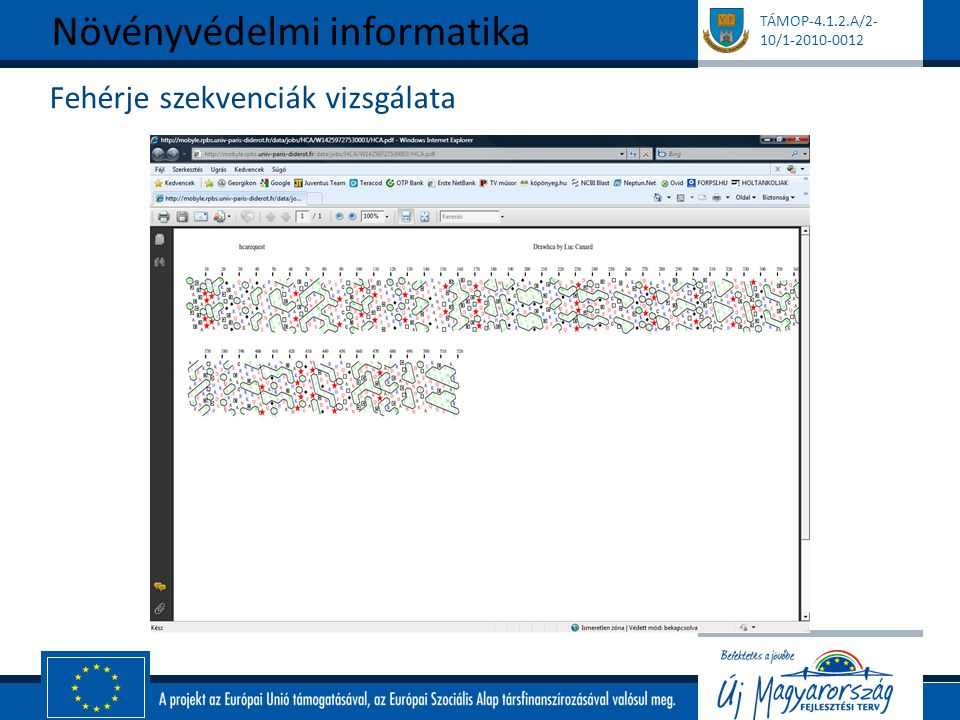 TÁMOP-4.1.2.A/2- 10/1-2010-0012 Fehérje szekvenciák vizsgálata Növényvédelmi informatika
