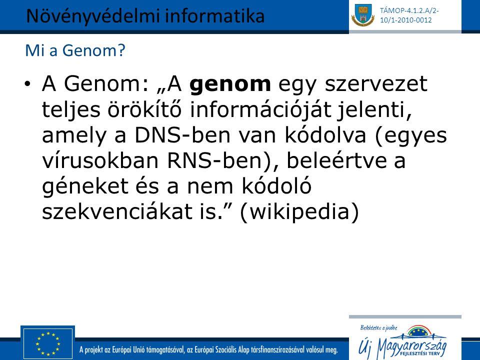 """TÁMOP-4.1.2.A/2- 10/1-2010-0012 Mi a Genom? A Genom: """"A genom egy szervezet teljes örökítő információját jelenti, amely a DNS-ben van kódolva (egyes v"""