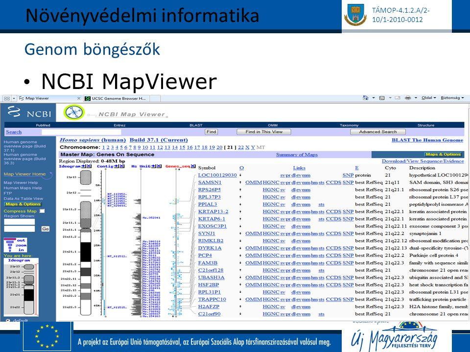 TÁMOP-4.1.2.A/2- 10/1-2010-0012 Genom böngészők NCBI MapViewer Növényvédelmi informatika