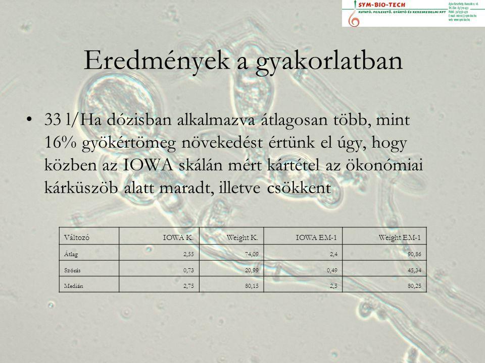 Eredmények a gyakorlatban 33 l/Ha dózisban alkalmazva átlagosan több, mint 16% gyökértömeg növekedést értünk el úgy, hogy közben az IOWA skálán mért kártétel az ökonómiai kárküszöb alatt maradt, illetve csökkent VáltozóIOWA K.Weight K.IOWA EM-1Weight EM-1 Átlag2,5574,092,490,86 Szórás0,7320,990,4945,34 Medián2,7580,152,580,25