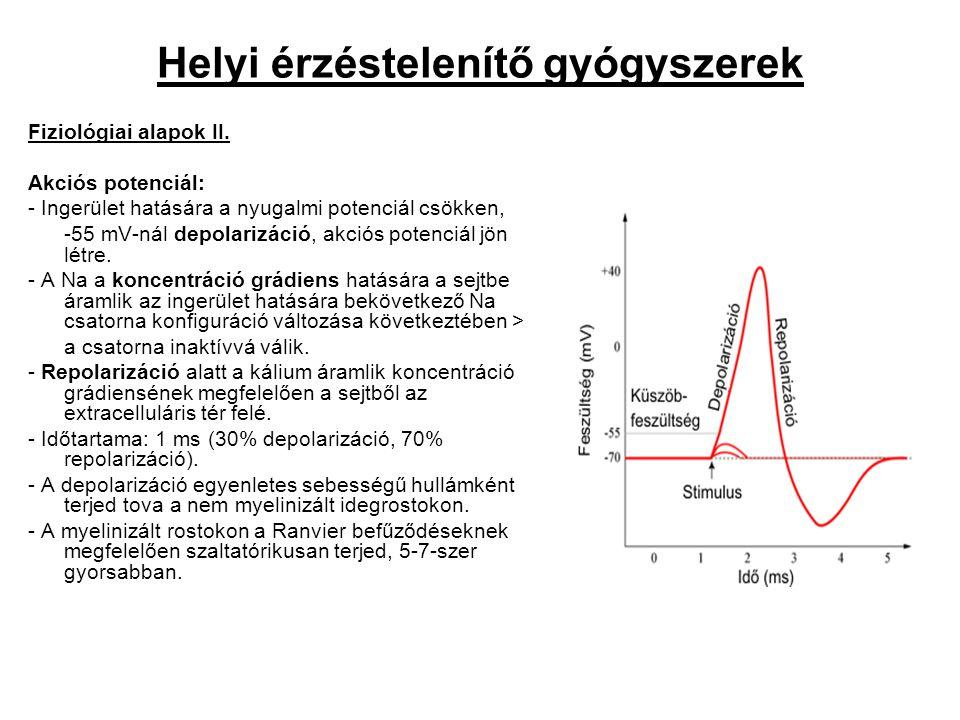 Helyi érzéstelenítő gyógyszerek Fiziológiai alapok II. Akciós potenciál: - Ingerület hatására a nyugalmi potenciál csökken, -55 mV-nál depolarizáció,